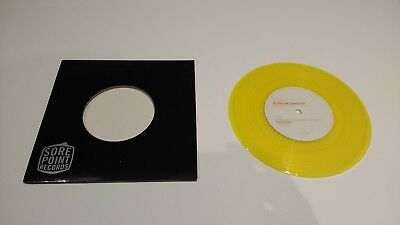"""Fall Out Boy/My Awesome Compilation - Grand Theft Autumn - Rare Split 7"""" Vinyl"""