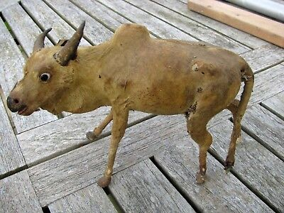 """VINTAGE INDIAN HAND MODELLED BULL WITH HUMP, REAL HIDE, EXQUISITE 18cm (7"""") N/R"""