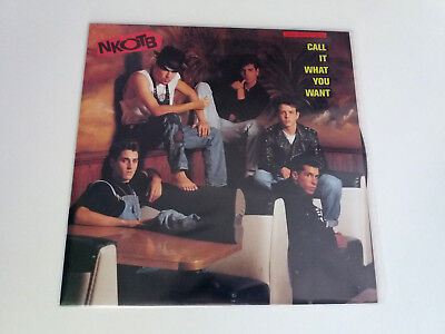 "New Kids On The Block Nkotb ""call It What You Want"" Maxi 12"" Vinyl Vg/vg Mbe/mbe"