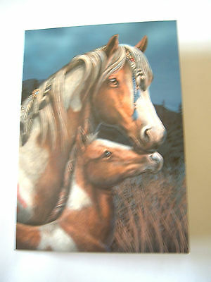 Lisa Parker Beautiful Blank Greetings Card Cellophane New & Sealed - Apache