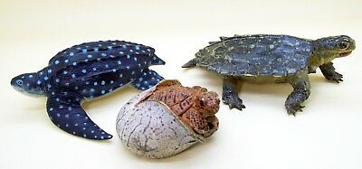 3 pcs Turtle Tortoise figure AAA Green Notched Safari Leatherback sea turtle