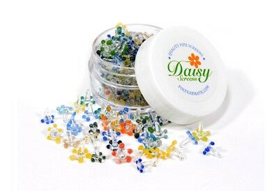 100 daisy glass screen for pipes (w/ plastic container) U.S.A seller
