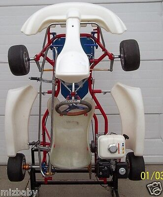 Birel chassis used AR 28 with 4.5 honda used. Great starter kart for 7-9 year