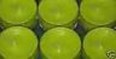 Partylite 48 Green Apple Tealights In All