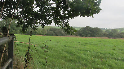 9.2 Acres Of Land For Sale In South East Cornwall Cornwall