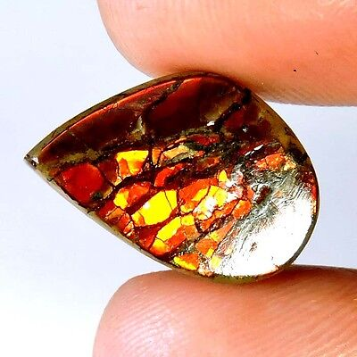 11.85cts 100% NATURAL EXCELLENT TOP MULTI SHINING AMMOLITE FANCY CAB A+ GEMSTONE