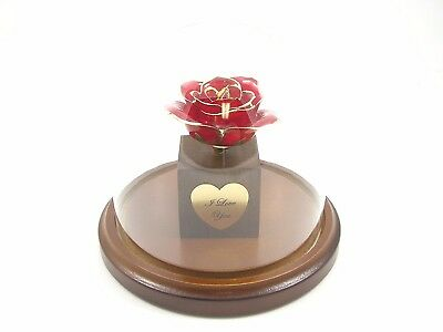 Enchanted 24k Gold Dipped Red Real Rose Bloom
