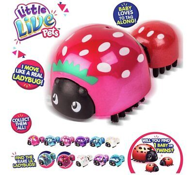 Little Live Pets Lil' Ladybug and Baby Assorted