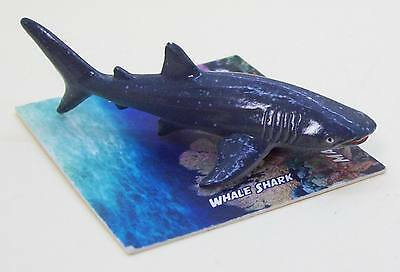 SeaWorld Exclusive Magnificent miniatures decor Great Whale shark figure New