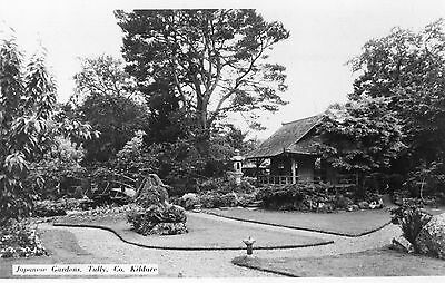 JAPANESE GARDENS TULLY CO. KILDARE IRELAND RP IRISH POSTCARD by ASHE STUDIOS