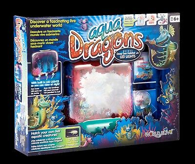 Aqua Dragons Deluxe With Led Lights Free Shipping From The Uk