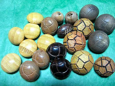 "(21) 1/2""-3/4"" Brown Tones Wood Shank Buttons Assorted Vintage Lot (Pc31)"