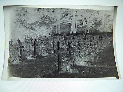 Vintage Negative Graveyard with Wooden Crosses Military