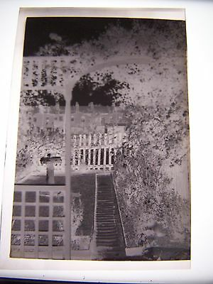 Vintage Negative long Garden View with Stone Sundial Flowers