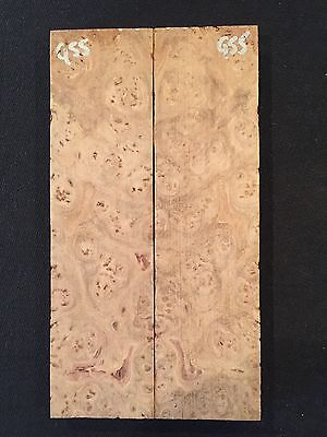 Chechen Eye Burl Knife Scales Craftwood G55