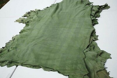 Pale Green perforated lambskins 6 sq ft Soft pliable Garment lamb skin leather