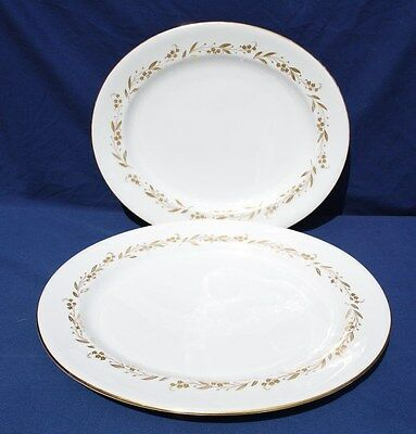 "Two (2) Royal Worcester ""saguenay""  Large Oval Sandwich Plates"