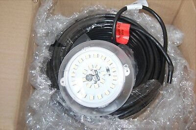 Jandy Jluw10-100 White Only Nicheless Led Pool Spa Light 12V 10W 100Ft Cord