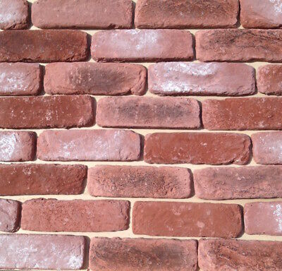 brick slips  ANTIQUE RUSTIC RECLAIMED  - Thin Brick wall cladding Tile SAMPLE