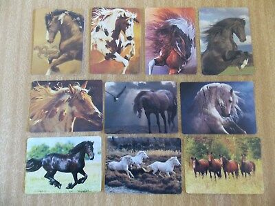 Swap playing cards    10  Modern Wides   Horses   #H27