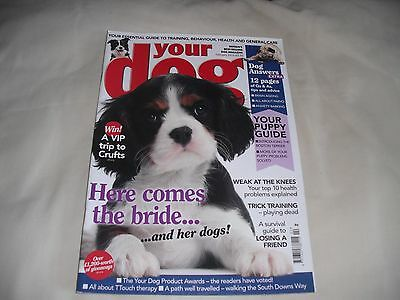 Your Dog Magazine February 2014 (A Survival Guide To Losing A Friend)