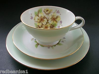 Noritake Vintage China Flower Blossoms Trio Tea Cup Saucer Plate RC c1950s Japan