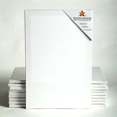 "10 ART-STAR STRETCHED CANVASES | ~16x24"", 100% Cotton 