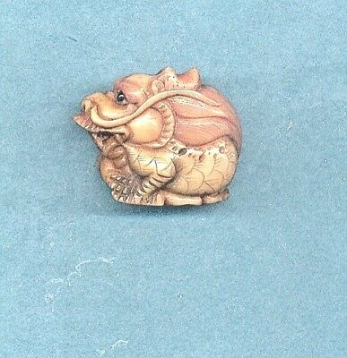 Resting Curled Dragon  Hand Carved Tagua  Nut Netsuke  943