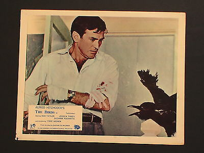 The BIRDS. ( Rod TAYLOR : Alfred HITCHCOCK.)  FOH still.