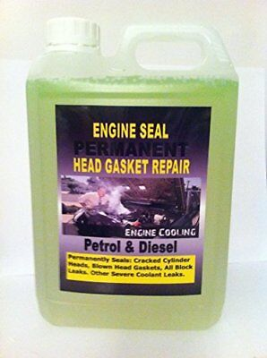 Steel Seal Head Gaskets Repairs, Mcp, Premium Quality Instant Sealant,8 Cylinder
