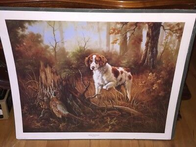 Brittany With Pheasant print
