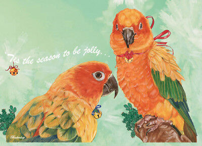 Sun Conure Parrot Christmas Cards Set of 10 cards & 10 envelopes