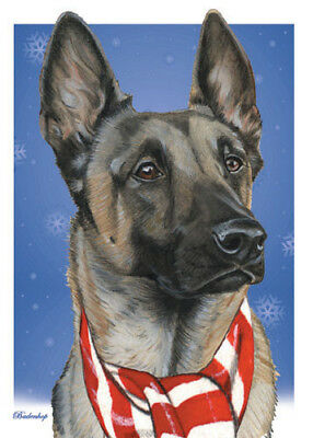 Belgian Malinois Christmas Cards Set of 10 cards & 10 envelopes