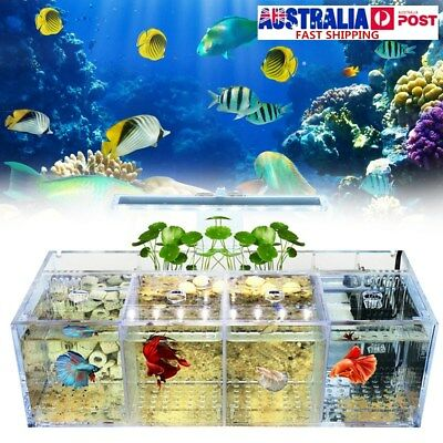 Acrylic Clear Betta Fish Tank Mini Desktop Aquarium LED Light Water Pump Filters