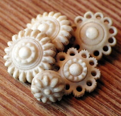 COLLECTION of Five ANTIQUE BUTTONS