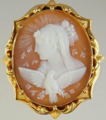 Beautiful Antique Victorian 18K Gold Aphrodite Goddess Bird Shell Cameo Brooch