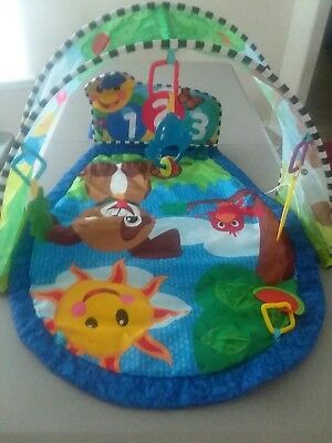 Baby Einstein Activity Gym Play Mat