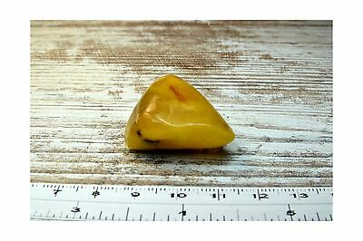 8.00G NATURAL POLISHED GENUINE Baltic Amber Stone Great for Making Brooch Neckla