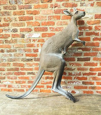 Wall Mounted kangaroo