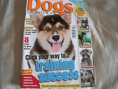 Dogs Monthly Magazine August 2013