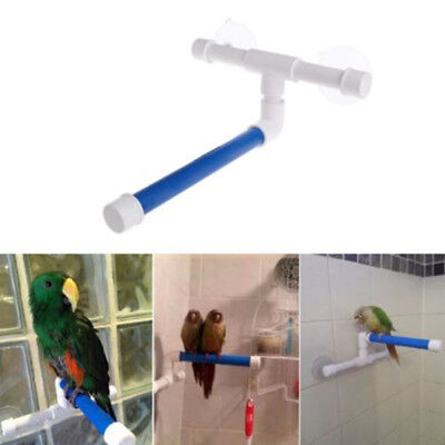 Birds Parrot Funny Shower Stand Perch Window Wall Suction Cup Toys Paw Grinding