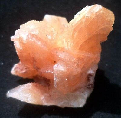 Twin Crystals Of Salmon Pitch Color Stilbite # 2935