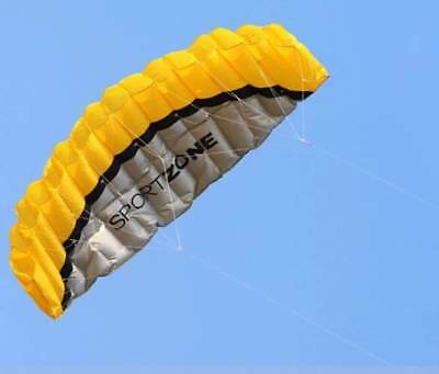 2.5m Dual Line Power kite - SportZone