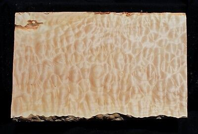 """Awesome 5A Quilted Maple 24 7/8"""" X 16"""" X 2"""": Guitar, Luthier, Craft"""