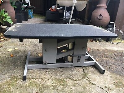 Large Grooming table