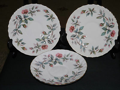 3 Vintage Retro Royal Stafford Bone China Bramble Rose Saucers. Excellent,