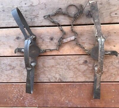 2 - Vintage Blake and Lamb longspring traps - #3 and #4 with dished pans