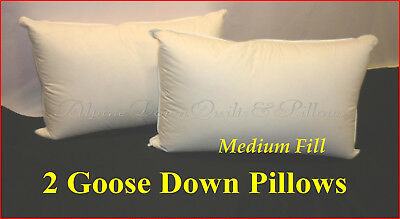 STANDARD PILLOWS x 2 - 70% GOOSE DOWN  100% COTTON CASING SPECIAL SPRING SALE