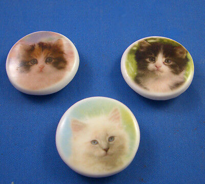 """1""""  Birchcroft Porcelain China  Buttons - Collection Of Three Kittens"""