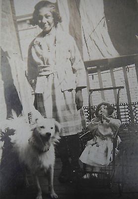Cabinet Card / Girl outside with her dog & doll & carriage
